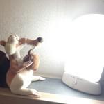 Lampe de luminothérapie : une idée lumineuse pour chassez la fatigue !