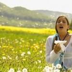 Allergie au pollen : comment se soigner avec les huiles essentielles ? (2/3)