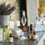 6 points pour découvrir les huiles essentielles